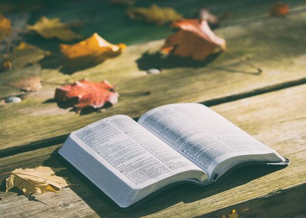 fall-bible